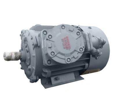 Электродвигатели серии ВАО2